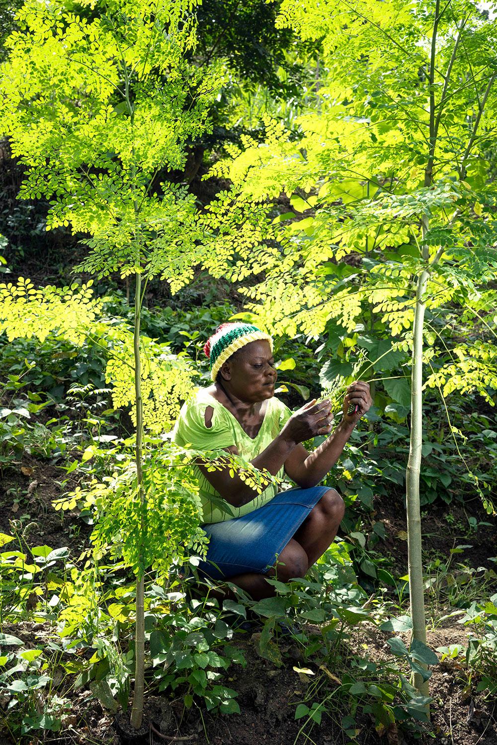 Bender pflanzt Bäume für eine nachhaltige Zukunft